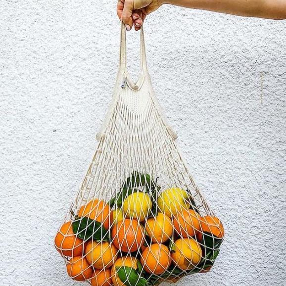oranges dans filet de peche