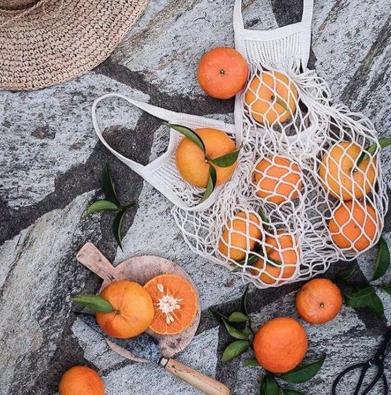 orange sur rocher